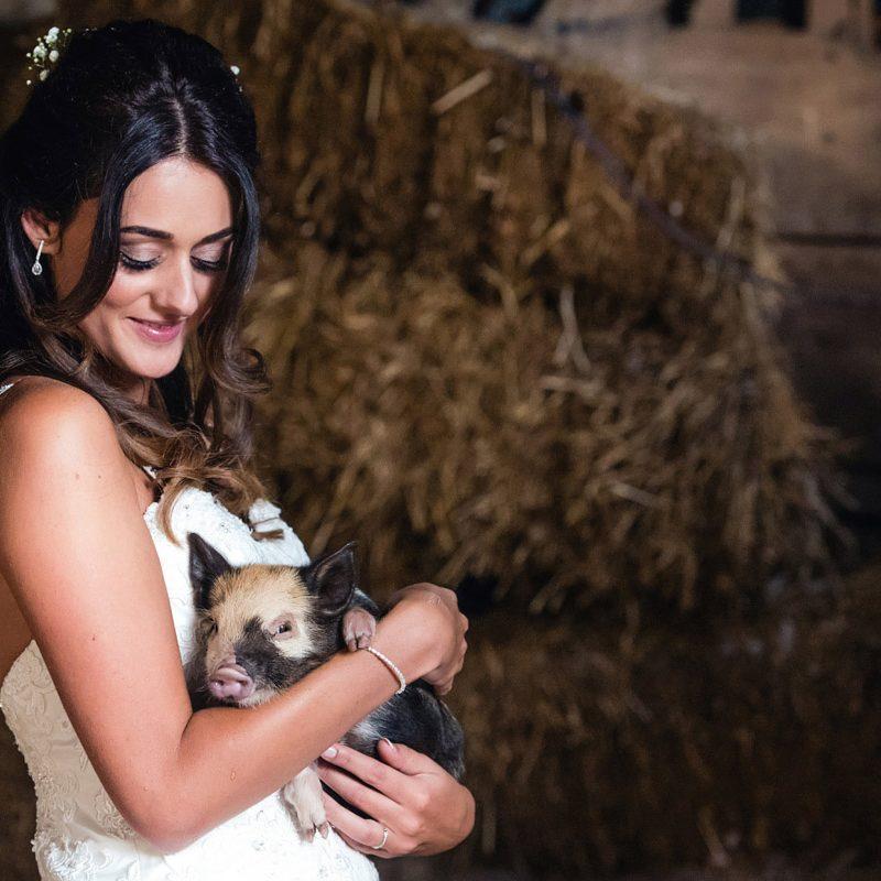 Bride holding piglet